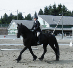 Anna Hilberry and Navarre doing dressage