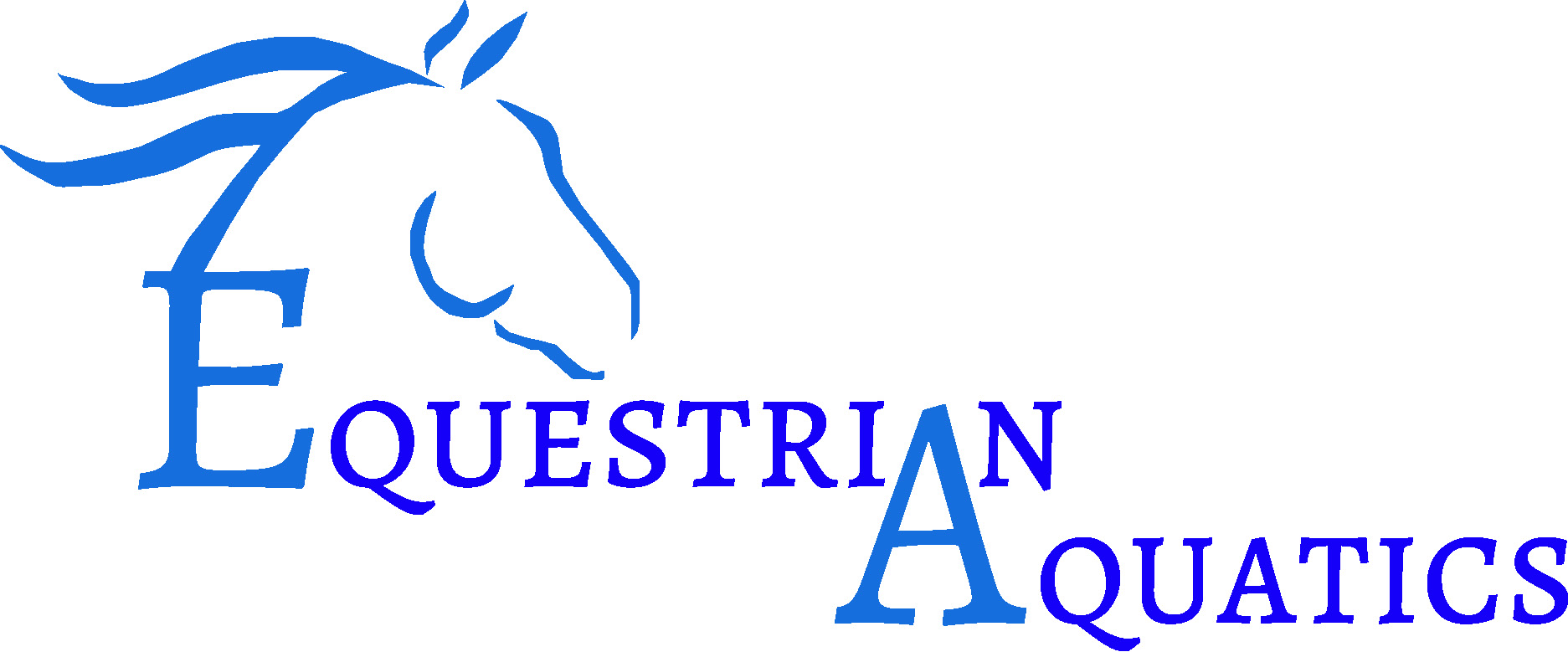 Equestrian Aquatics Program Logo